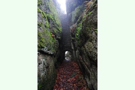 Zřícenina hradu Štarkov v podzimním oparu